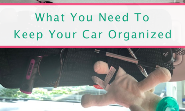 Keep Your Car Organized With These GENIUS Ideas